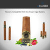 Blueberry Flavour Cigar Cartomizer 4